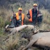 30,000 acres of great Semi-guided hunting so you don't get lost.