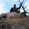 Discounted Private Land Trespass/Fee Semi-Guided Mule Deer Hunt in Colorado