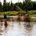 Alaska Bush Guides
