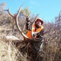 Colorado Elk, Mule Deer, DIY Hunt on private ranch in GMU 42