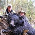 Idaho Bear, Elk, Deer Hunts Challis Idaho