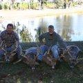 Nebraska Mule Deer, Whitetail Deer  Hunts