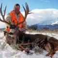 New Mexico Elk, Coues Deer, Mule Deer Hunts