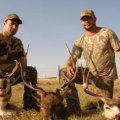 Colorado Elk, Mule Deer, Antelope Hunts Northwest Colorado GMU 3,4