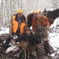 Colorado Flat Top Wilderness Drop Camp Elk, Mule Deer Hunts GMU 24