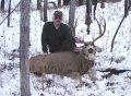 Idaho Black Bear, Mule Deer, Elk, Moose, Mountain Lion Hunts