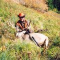 Idaho DIY Drop Camp Elk, Deer, Bear Combo Hunt