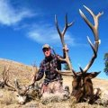 Colorado DIY Trespass Hunts on Private Land, Elk, Deer, Antelope, GMU 3, 301, 4, 5, 15, 131, 214 and 441