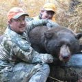 Colorado Elk, Mule Deer, Bear DIY Hunt GMU 53