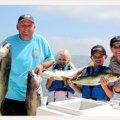 Bongos Sportfishing Charters