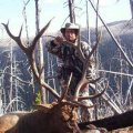 Wyoming Deer, Antelope, Elk Hunts in Medicine Bow Area