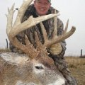 Missouri Whitetail Deer and Turkey only 2 seats only $ 2495! in Tipton