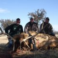 Lone Star Ranch Exotic Hunts & Double B Resort