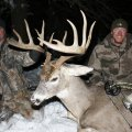 Missouri Whitetail Deer Hunts in Tipton