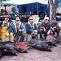 California Deer, Wild Hog, Turkey, Quail and Dove Hunting