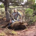 Colorado Deer Elk Bear GMU 53 54