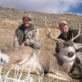South Dakota DIY Mule Deer Hunts