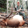 Colorado Elk Deer GMU 66,67,68,681 & 82