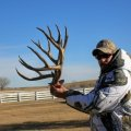 Nebraska Mule deer, Whitetail Deer, Antelope, Turkey, Pheasant, Duck
