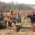 Colorado Elk, Mule Deer, Drop Camp Hunt in Flat Top Wilderness GMU 25