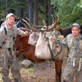 Colorado  Drop Camp Hunt near Meeker GMU 24