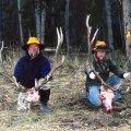 Colorado Elk, Mule Deer Drop Camp Hunts