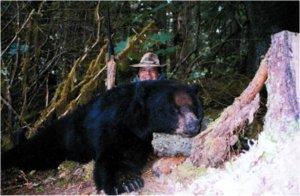 Alaska Bear and Sitka Deer Hunt