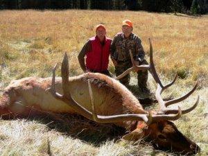 Colorado DIY Elk and Mule Deer Hunts in the San Juan Mountians